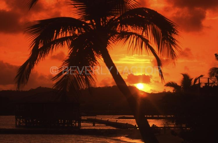 Island;Roatan;Honduras;Sunset;sky;clouds;sun;yelloew;water;red;palm trees;colorful;sillouettes;ocean