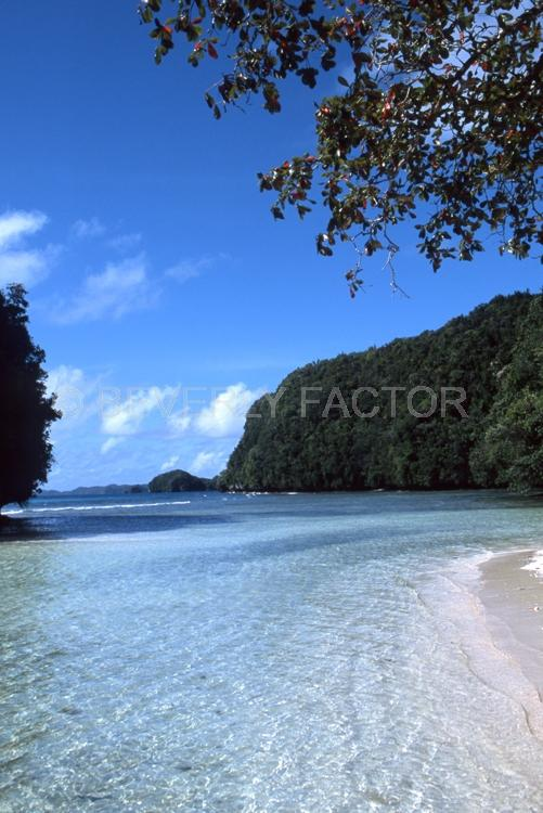 Island;Palau;blue water;sky;trees