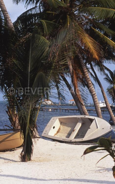 Islands;Belize;Island;blue water;boat;palm trees;blue;water