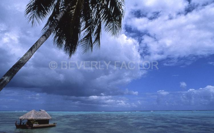 Islands;huts;ocean;palm trees;blue;water;sky;manihi;french polynesia;clouds