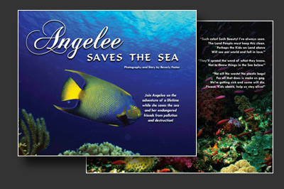Angelee Saves the Sea